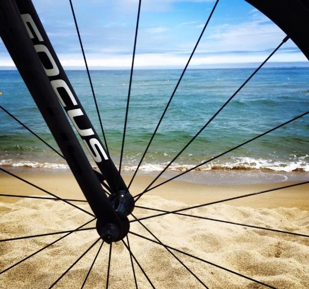 바퀴.jpg